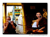 Monks of Myanmar